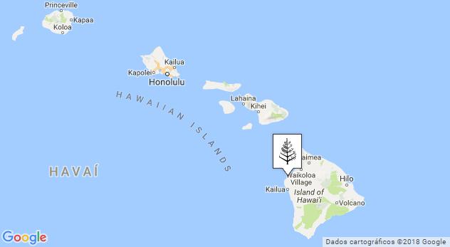 Eu estava aí onde mostra o ícone de árvorezinha! Kona Beach fica na Big Island do Hawaii.